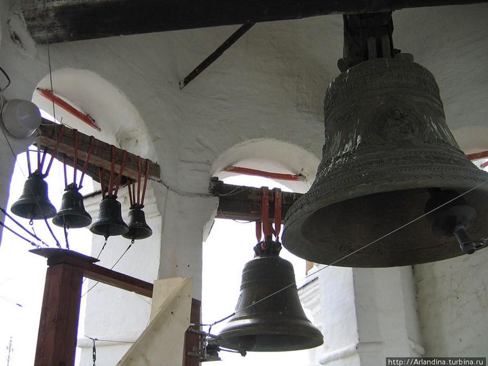 zvonnica