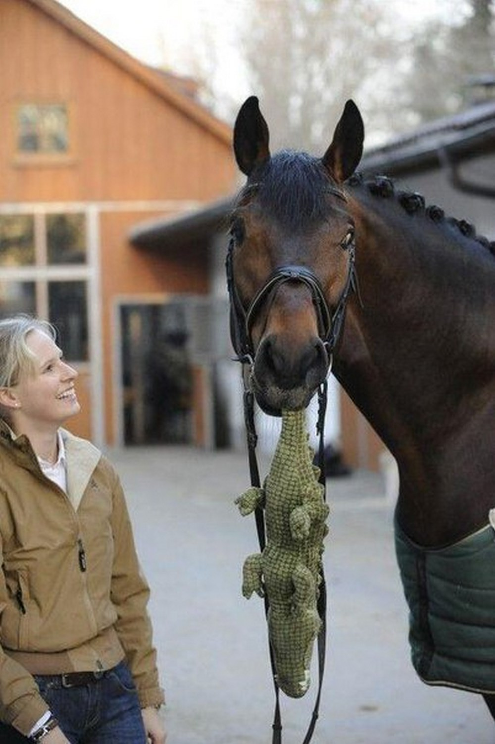 Даже у лошадей есть любимые игрушки