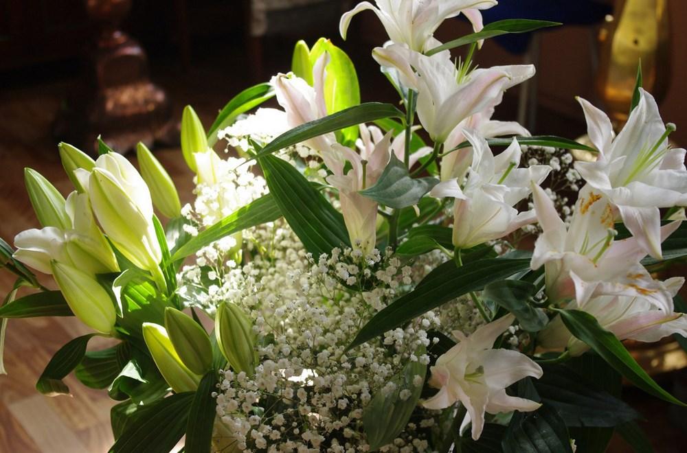 cvetnik01